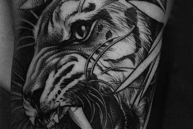 The Tiger Tattoo